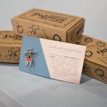 caja pins ilustre palencia web