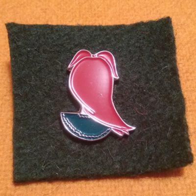 pin zamoranita